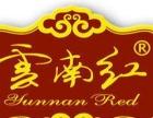 云南红玛咖酒广东招商加盟 正宗云南玛咖酒