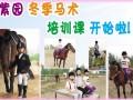 紫园马术馆 I 给您免费骑马体验,就在邯郸市飞机场附近!
