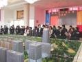 平湖国际进口商品城,长三角唯一,赠便利店加盟权!