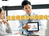 朝陽商務辦公Word Excel PPT培訓
