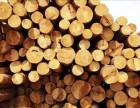 厦门进口木材报关清关代理公司