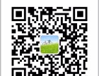 微信小游戏制作开发