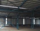 出租东城全新单一层滴水位7米钢构房1700方可分租