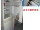 专业冰箱免拆清洗