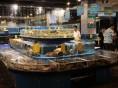无锡鱼缸定做鱼缸订做鱼缸海鲜池制作观赏鱼缸订做大闸蟹缸