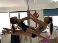 成都新都职业钢管舞 钢管舞演出培训 舞蹈演员培训学校