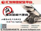 上海汇发网期货代理-期货配资-0投入-可日结!