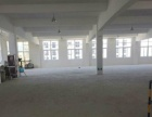 江口全新厂房单层2400平
