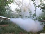 小型热力烟雾机 果园大棚打药弥雾机 高效率专用烟雾机一机多用