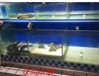 全新鱼缸价格456