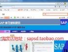 SAP学习系统+各类资料+承接安装培训运维业务