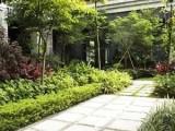 廣東怡軒園林提供專業小區別墅單位綠化養護服務