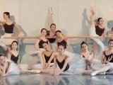 银川成人0基础舞蹈培训教学,可免费试课选舞种
