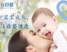 如皋育婴师培训,育婴员技能培训班