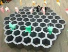 蜂巢迷宫互动道具最强大脑道具展览展示