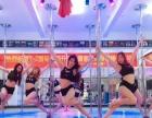 TZ舞蹈娱乐健身就业一体化