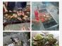惠州大亚湾小桂农庄休闲一日游 漂流 出海捕鱼卡丁车