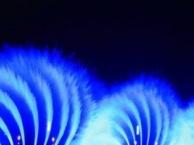 大连星海广场+东港音乐喷泉+威尼斯水城夜景一日游