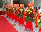 花锦世界 开业花篮 庆功典礼 讲台花 绿色植物,惠州惠城区