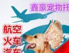 《北京中鐵鑫豪》寵物托運貓狗信鴿小寵-免費上門接送