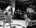 北京哪里学拳击-北京哪里学综合格斗-北京哪里学泰拳