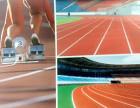 绿昂体育塑胶跑道球场材料