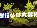 广东游乐园设备有哪些,考拉大冒险主题乐园智育乐教