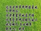 昌平草坪 朝阳草坪 怀柔草坪 密云草坪销售销售草坪庭院草坪