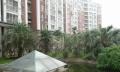 市中心(金马国际花园)精装三房 全明通透 景观楼层 出国急售