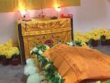 宠物公墓 重庆宠物殡葬