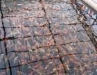 南京鱼缸清洗换水保养维护服务