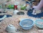 青岛提供优质珍珠加工淡水养殖珍珠散件利润可观