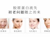 韩国护肤品批发,德妃提拉紧致面膜,滋润保湿,提亮肤色