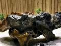 根雕茶几金丝楠木原木整体树根茶桌家用茶具雕刻茶海实木功夫茶台