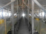 安徽养殖专业合作社