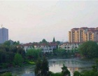 锦绣香江,菱湖印象,东方城新房在售,不是二手房,首付只需两成