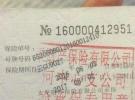 五羊本田1251元