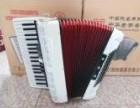 鹦鹉 金杯 霍纳 百乐牌手风琴系列产品批发价