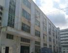 福永和平楼上1080平米带装修不要转让费厂房出租