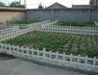 成都幼儿园塑钢草坪围栏预定