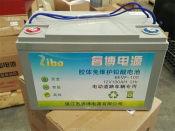 镇江质量好的免维护电池厂家推荐,旅游观光车免维护电池报价