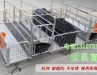 优质的母猪产床世昌畜牧厂家直销量大从优