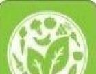 蔬菜水果粮油免费送货上门