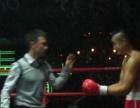 专业运动员拳击授课