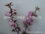 日本工艺高品质低反射玻璃,防眩玻璃