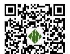 专业承接园林景观设计、花卉租摆、绿化养护臻品盆景等