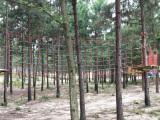 樹林拓展器材施工 信陽學生叢林穿越設備