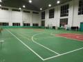 南宁市江南区大沙田秀林花园室内篮球羽毛球馆