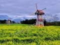 宜昌景观风车雕塑