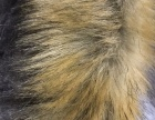 人造毛毛领帽条加工 质量保证 可来样加工定做